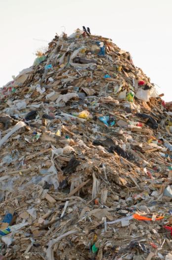 Mountains of Trash